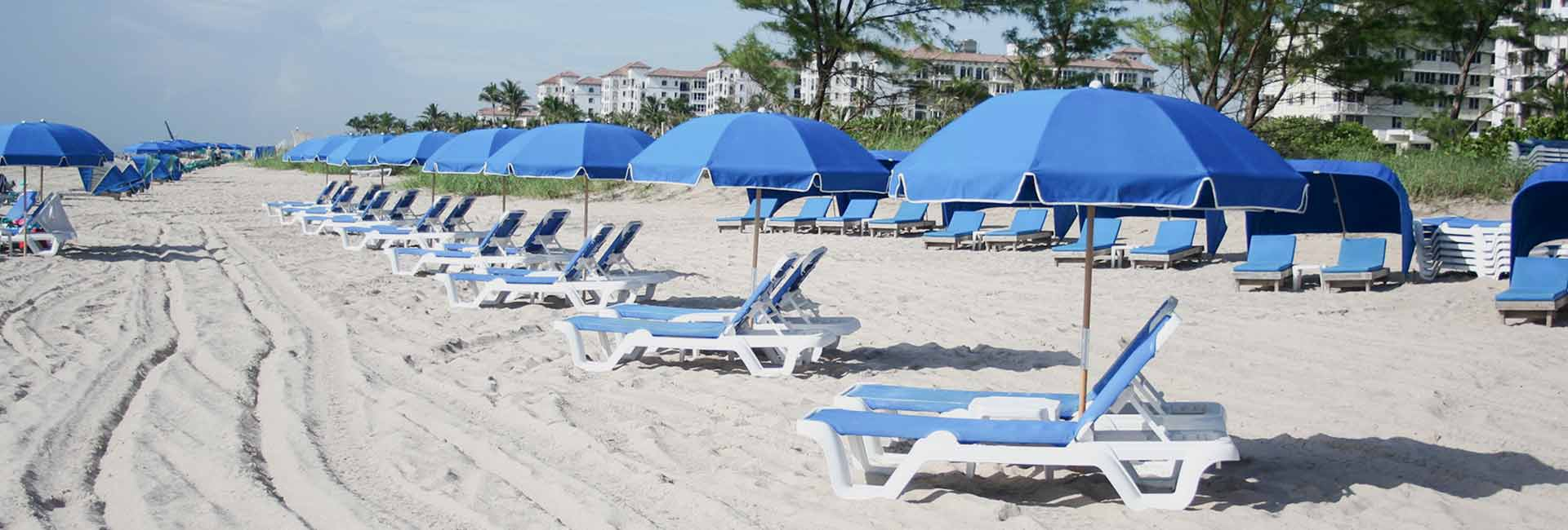 Blue beach chairs on Palm Beach resort